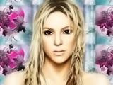 The Fame: Shakira